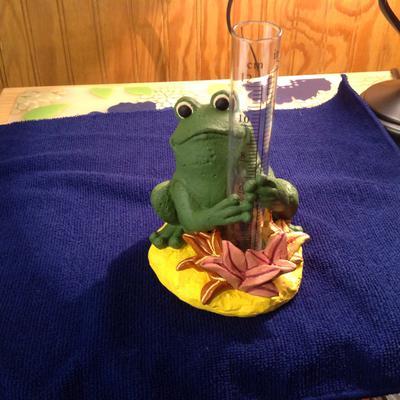 Daughters frog rain gage
