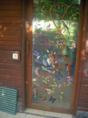 Glass Door with Australian Birds